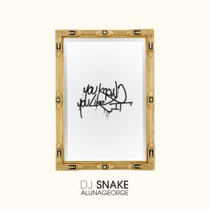 dj-snake-alunageorge-you-know-you-like-it-fan-contest